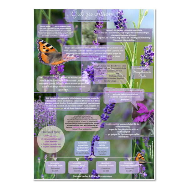 "Poster ""Lavendel"" Format A2 - Vivere Aromapflege - AromaMama"