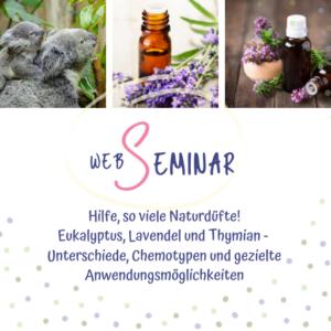 Web-Seminar Eukalyptus, Lavendel, Thymian - Sabrina Herber & Eliane Zimmermann