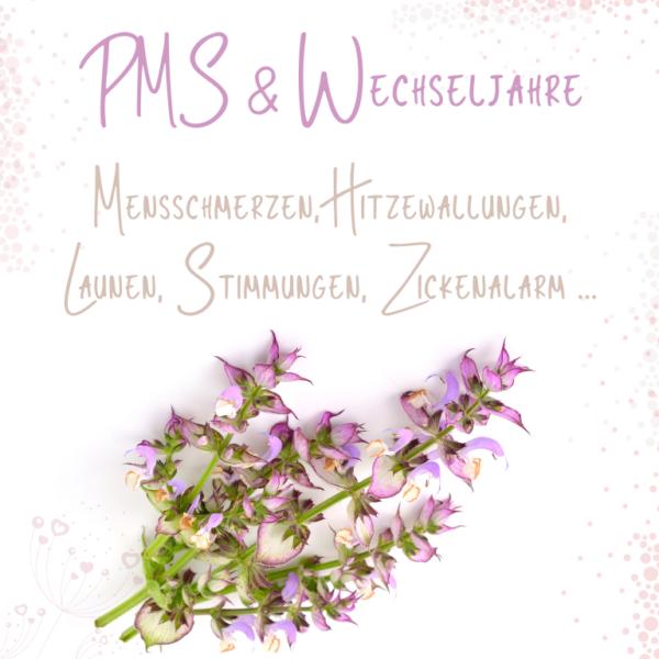 Web-Seminar PMS & Wechseljahre - Sabrina Herber und Eliane Zimmermann