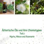 Web-Seminar-Aufzeichnung AromaMama Sabrina Herber und Eliane Zimmermann